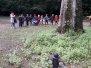 2020-10-02 Jesień w lesie